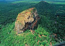 スリランカのジャングル